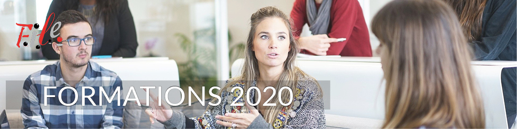2020 Site article 800x200 Formations 2020